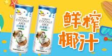 海南椰欣食品有限公司