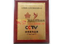 CCTV央视宣传品牌