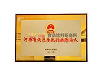 河南省促进全民创业带头人