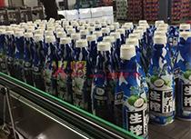 椰子汁产品陈列