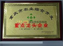 重庆市农业综合开发重点龙头企业