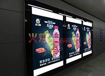 玛咖乳酸盐广告