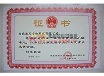 龙头企业证书