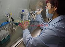 技术人员进行生化检测