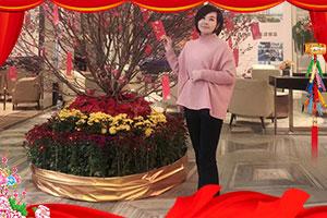 【海鹭亚虎老虎机国际平台】张总祝您猪年大吉,财运亨通,万事如意!