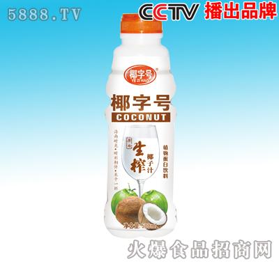 500ml椰子汁新版