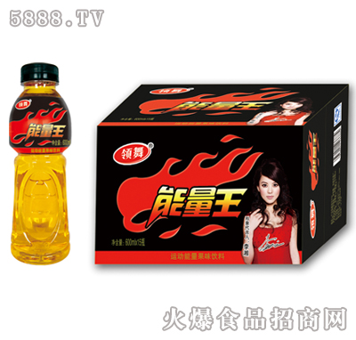 600ml×15瓶领舞强化型新维饮料