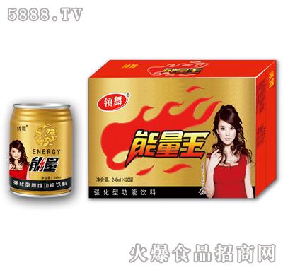 240ml×12罐领舞强化型功能饮料