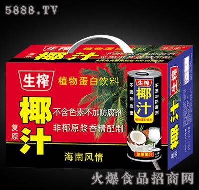 生榨椰汁植物蛋白饮料(箱)