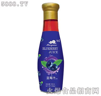 天然浩园蓝莓汁320ml