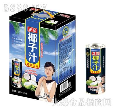 汇之果正宗椰子汁植物蛋白饮料240mlX20罐