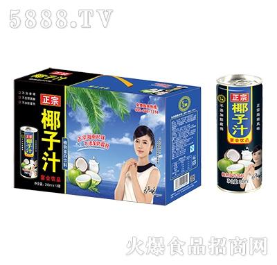 汇之果正宗椰子汁植物蛋白饮料240mlX10罐