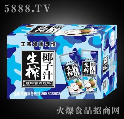 生榨椰子汁饮料箱