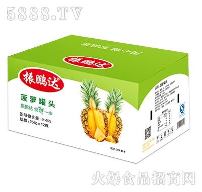 256gx12瓶菠萝罐头彩箱