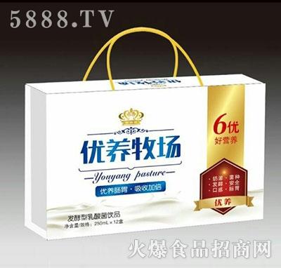 优养牧场发酵型乳酸菌饮品250mlx12盒