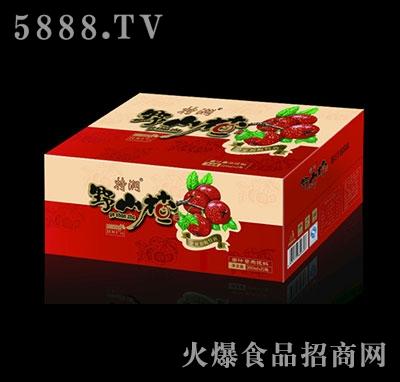 特润野山楂果汁380mlX15瓶
