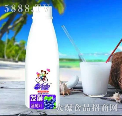 456ml雨露发酵蓝莓汁