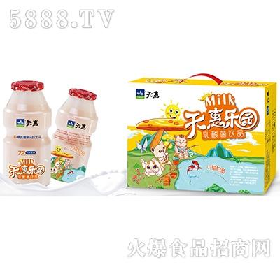 天惠乐园小猫钓鱼乳酸菌饮品