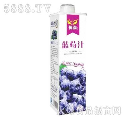 恒润蓝莓汁饮料