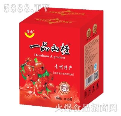 浩园一品山楂果汁果肉型饮料1Lx6瓶