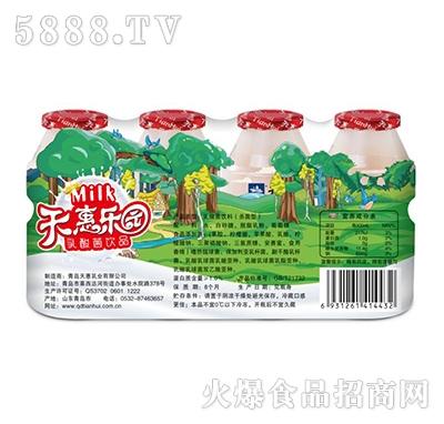天惠乐园乳酸菌饮品