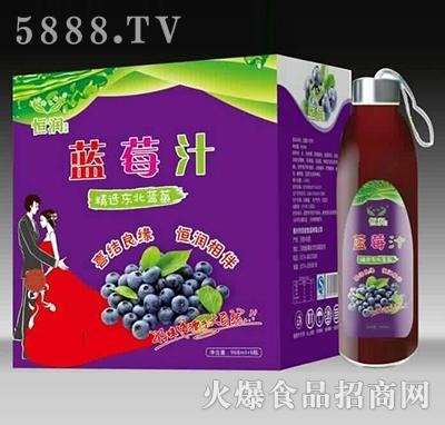 恒润蓝莓汁