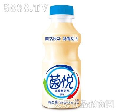 菌悦乳酸菌饮品原味338ml