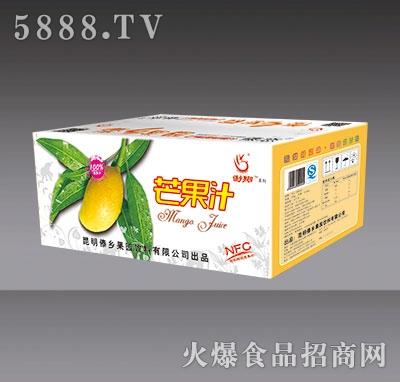 傣乡果园芒果汁外箱