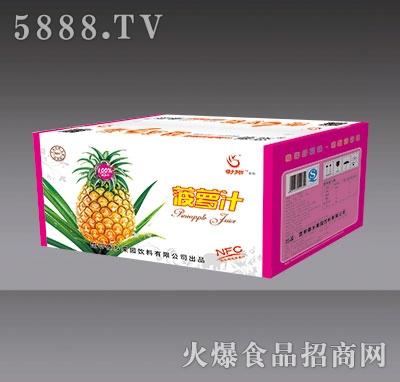 傣恋菠萝汁外箱