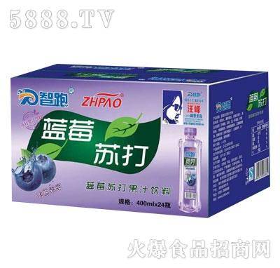 智跑蓝莓苏打水400mlX24瓶