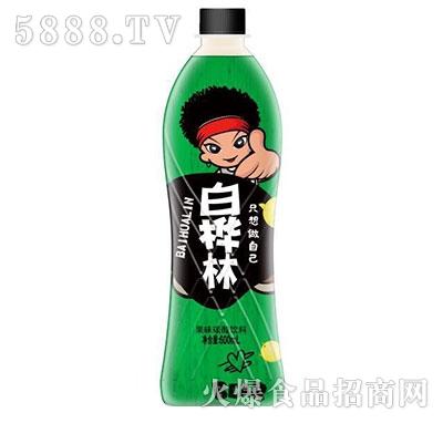 白桦林果味碳酸饮料600ml