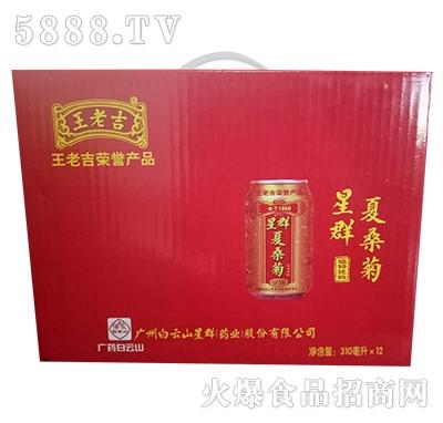 星群夏桑菊植物饮料礼盒