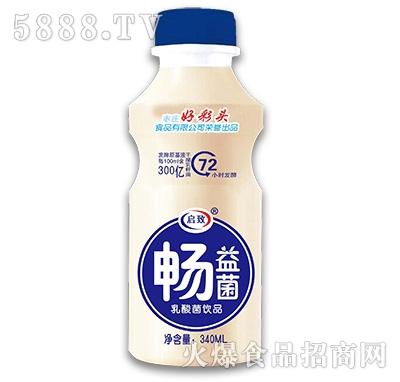 好彩头畅益菌乳酸菌饮品340ml