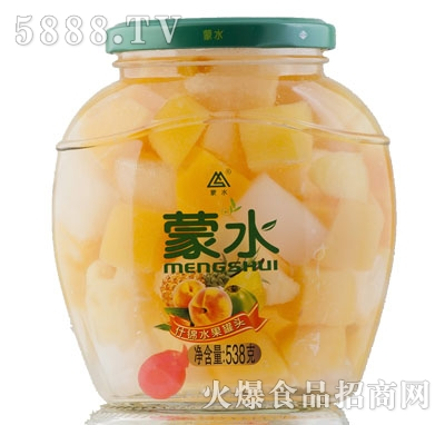 蒙水什锦水果罐头538g
