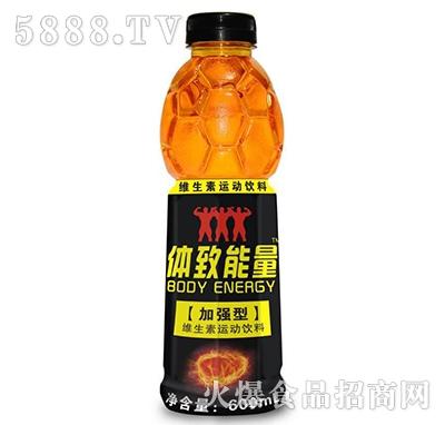 体致能量加强型维生素运动饮料600ml
