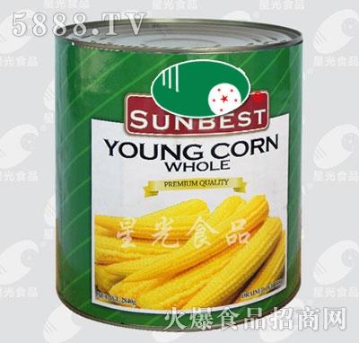 星光食品玉米笋240g
