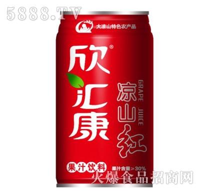 欣汇康凉山红果汁饮料