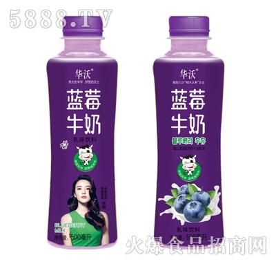 华沃蓝莓牛奶