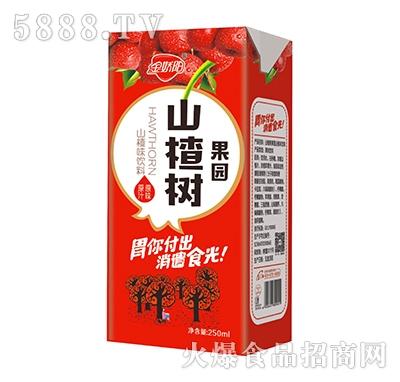 金娇阳山楂树果园山楂汁250ml