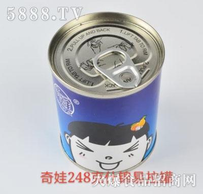 奇娃什锦水果罐头248g