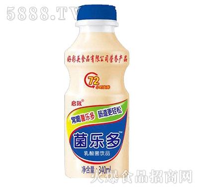 菌乐多乳酸菌饮品340ml