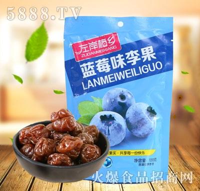左岸梅乡蓝莓味李果120克