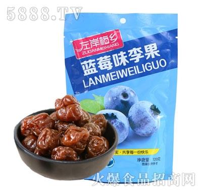左岸梅乡蓝莓味李果120g