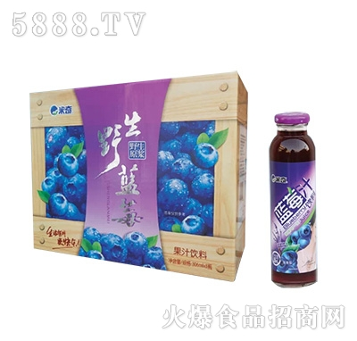 蓝莓果汁饮料306ml×8瓶