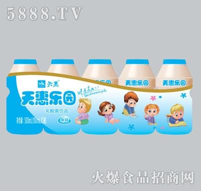 天惠乐园原味乳酸菌饮品100mlx5瓶