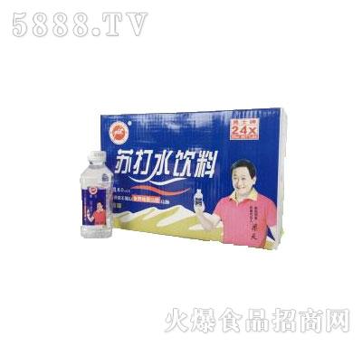 勇士苏打水饮料350mlX24瓶