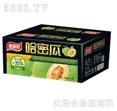 膳鑫园哈密瓜果汁380mlx15