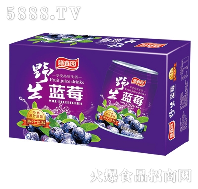膳鑫园蓝莓汁饮料240mlx16罐/20罐/24罐