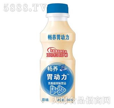 畅养胃动力乳酸菌饮品原味340ml