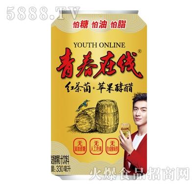青春在线发酵果汁饮料330ml